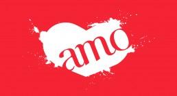 Design Gráfico Logo Amo Acessórios